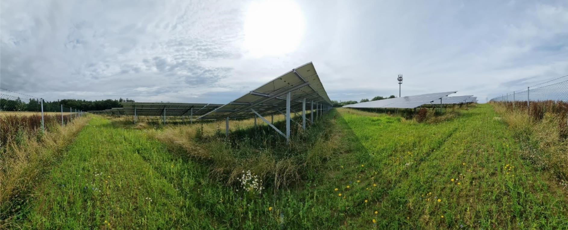 Ein Besuch im Bürger-Solarpark Paunzhausen